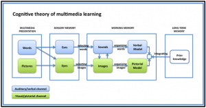 Cognitive Theory of Multimedia diagram