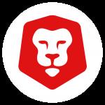 Curious Lion Team