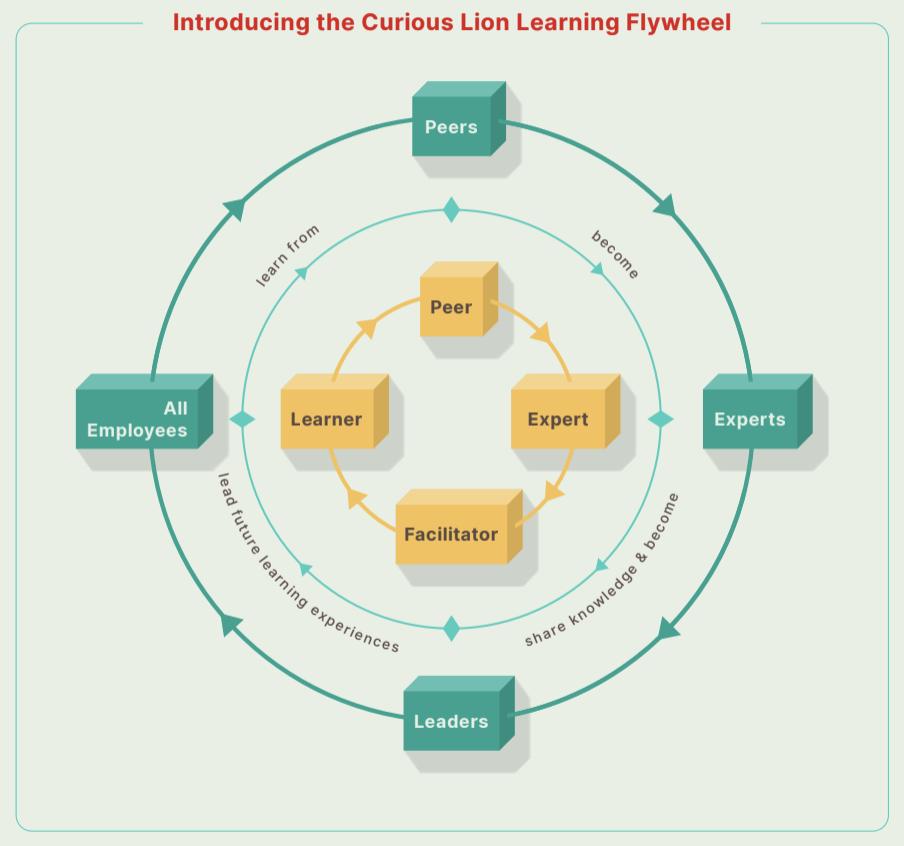 Learning Flywheel
